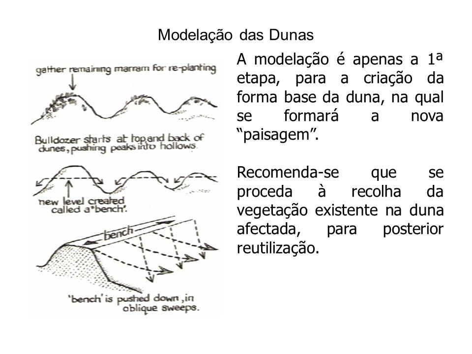 Modelação das Dunas A modelação é apenas a 1ª etapa, para a criação da forma base da duna, na qual se formará a nova paisagem .