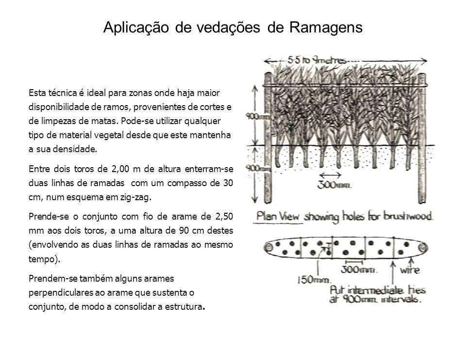 Aplicação de vedações de Ramagens