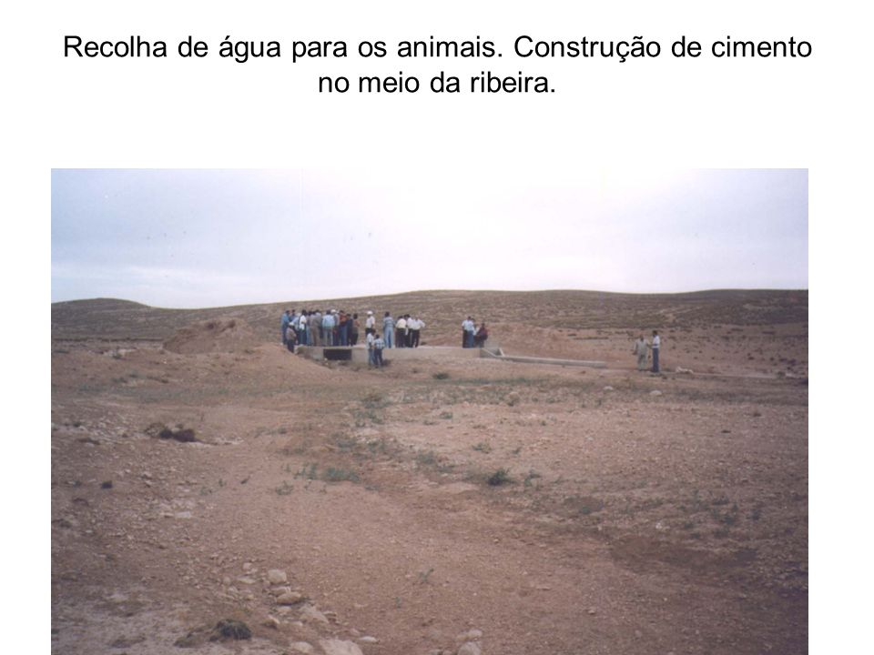 Recolha de água para os animais