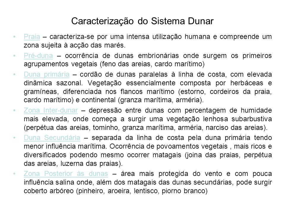 Caracterização do Sistema Dunar