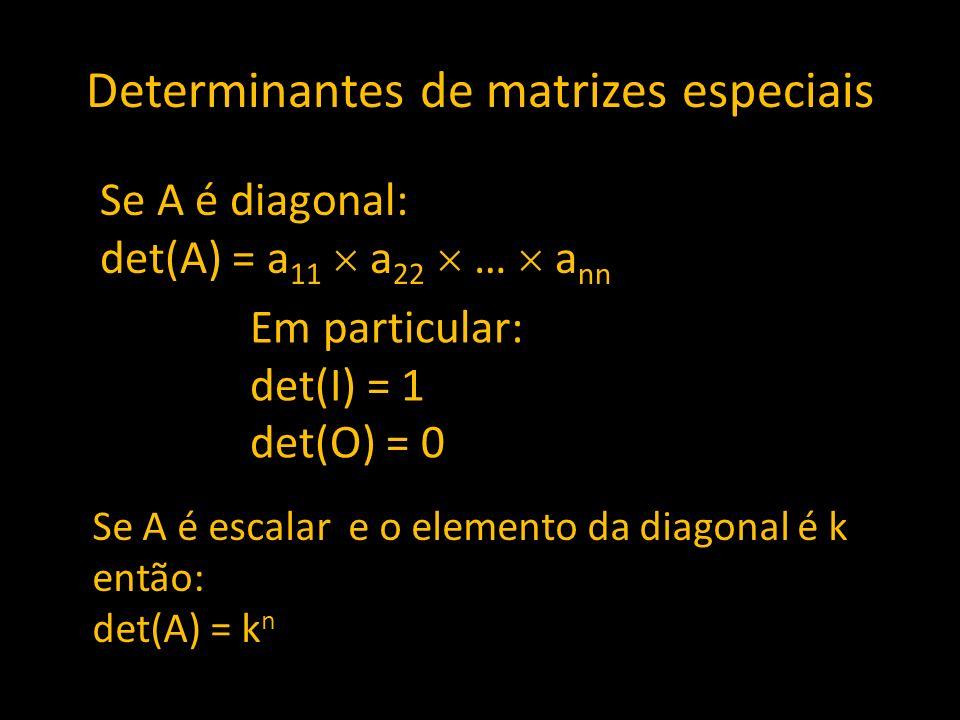 Determinantes de matrizes especiais