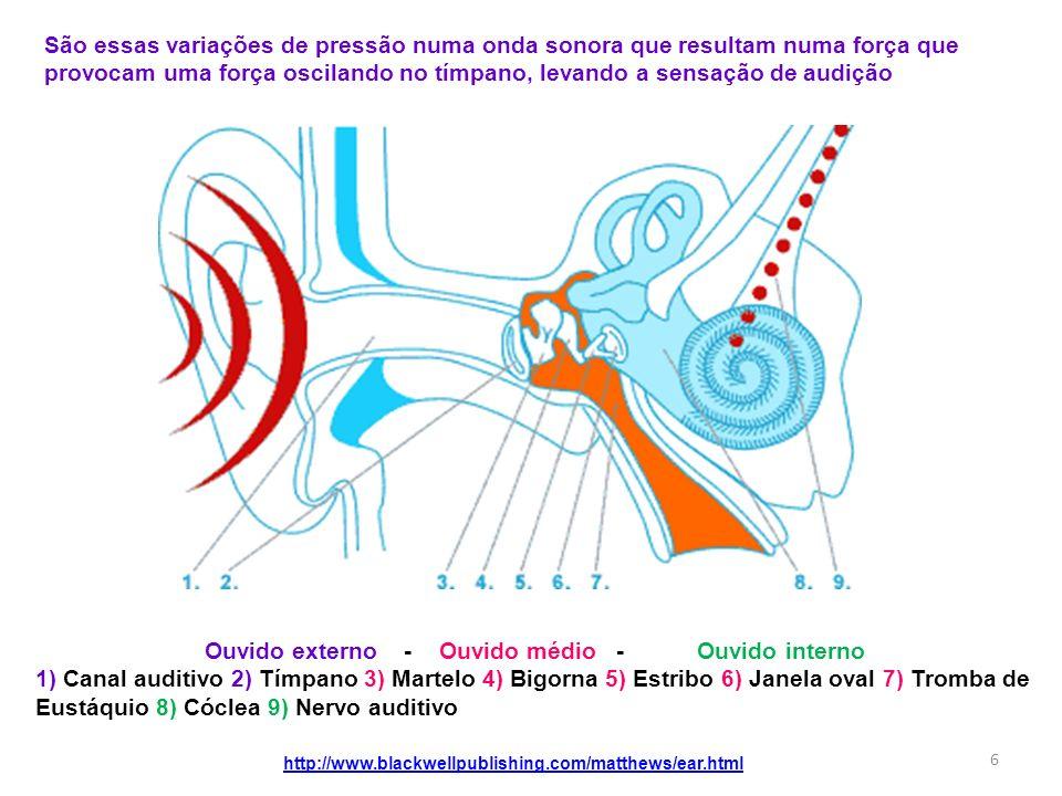 Ouvido externo - Ouvido médio - Ouvido interno