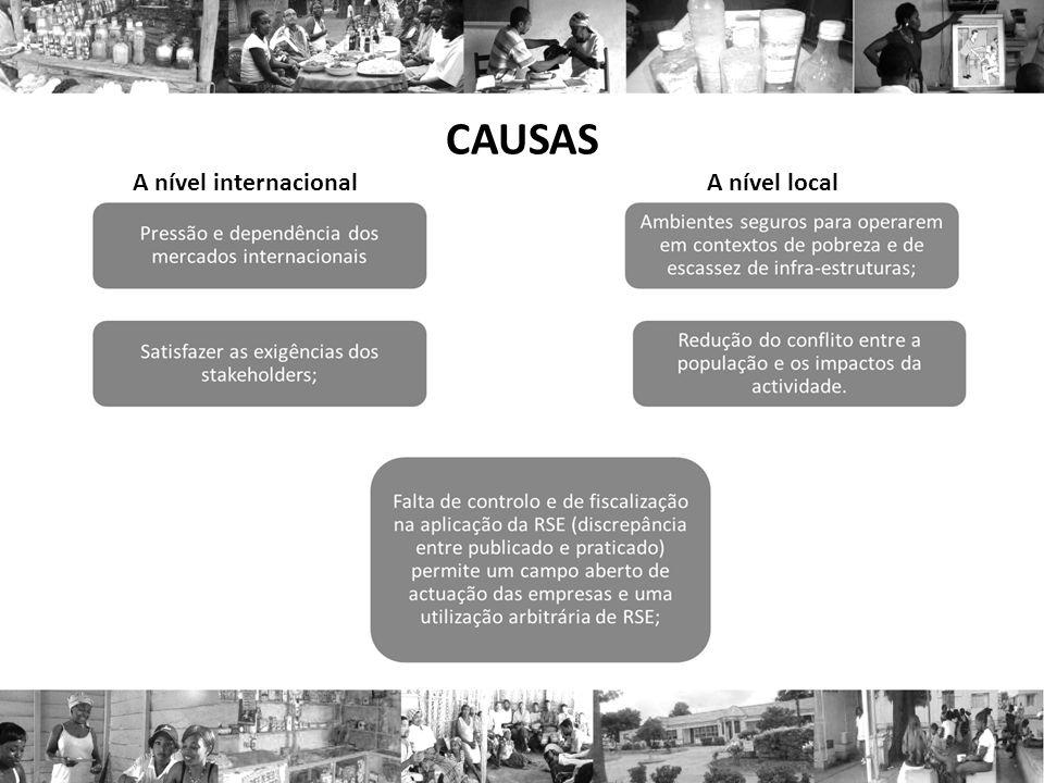 CAUSAS A nível internacional A nível local