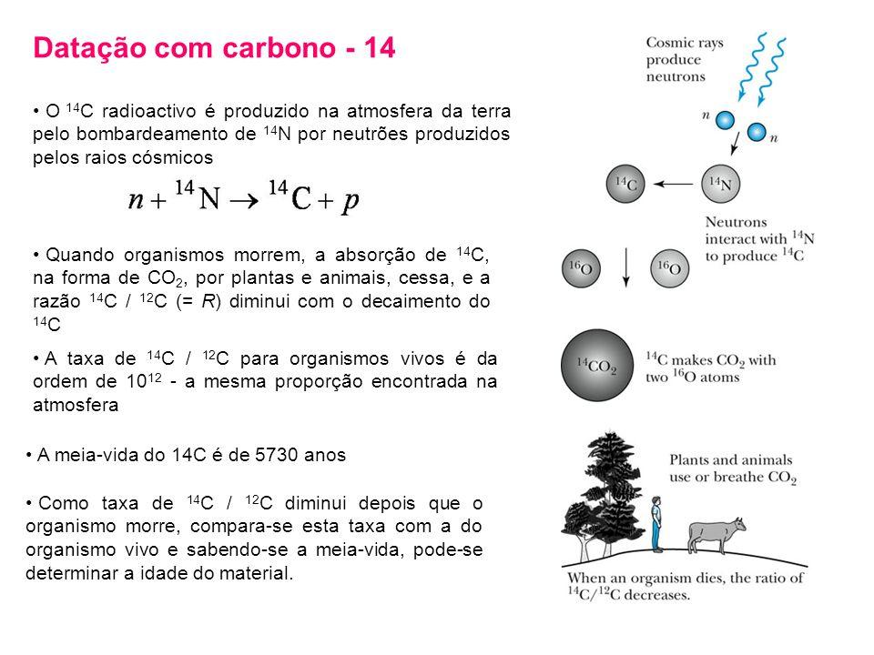 Datação com carbono - 14 O 14C radioactivo é produzido na atmosfera da terra pelo bombardeamento de 14N por neutrões produzidos pelos raios cósmicos.