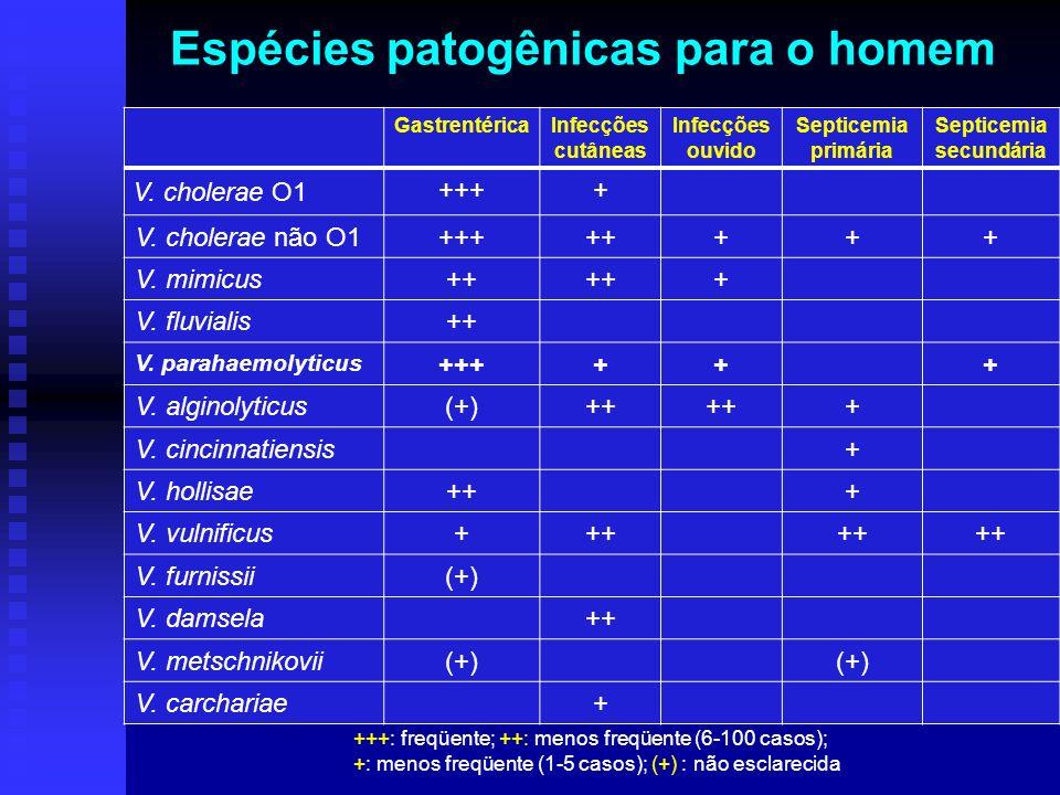 Espécies patogênicas para o homem