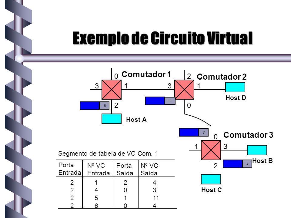 Exemplo de Circuito Virtual