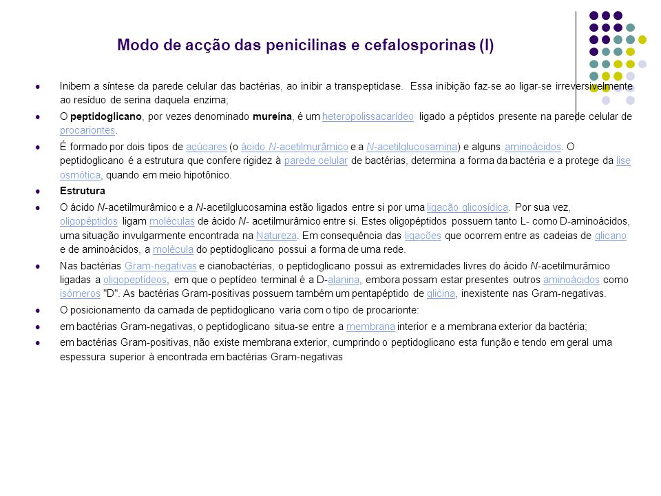 Modo de acção das penicilinas e cefalosporinas (I)