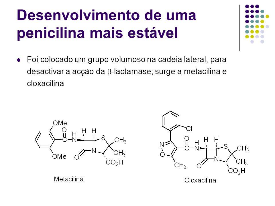 Desenvolvimento de uma penicilina mais estável
