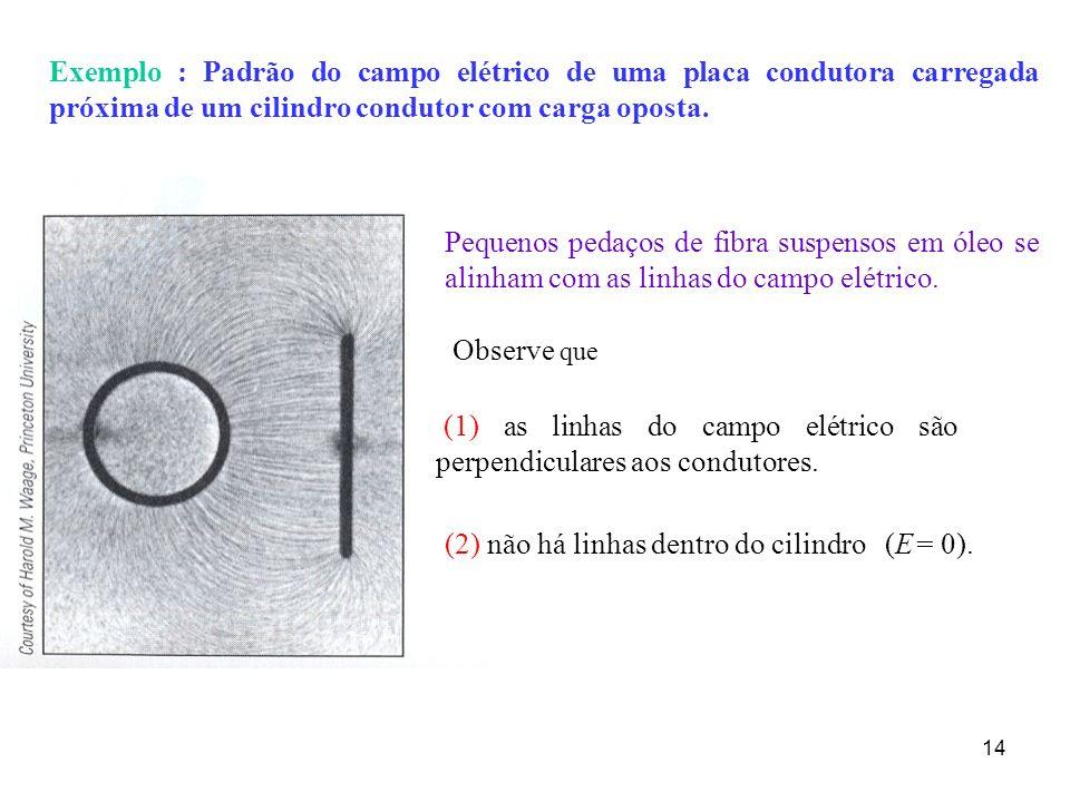 Exemplo : Padrão do campo elétrico de uma placa condutora carregada próxima de um cilindro condutor com carga oposta.