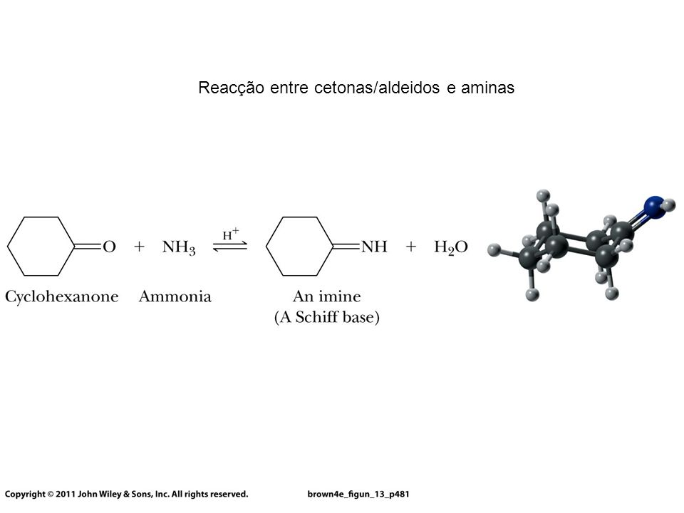 Reacção entre cetonas/aldeidos e aminas