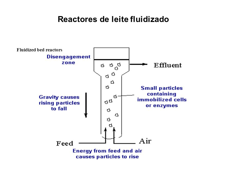 Reactores de leite fluidizado