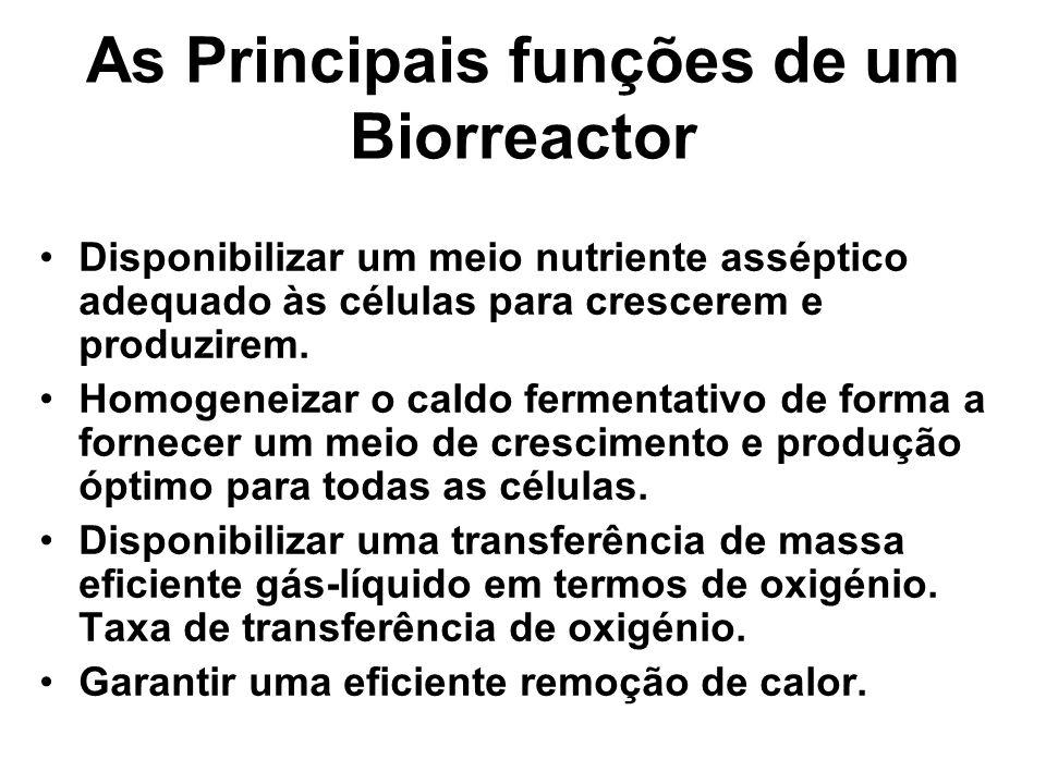 As Principais funções de um Biorreactor