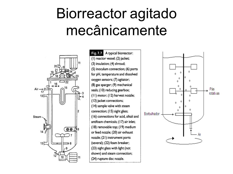 Biorreactor agitado mecânicamente