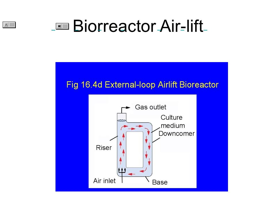 Biorreactor Air-lift