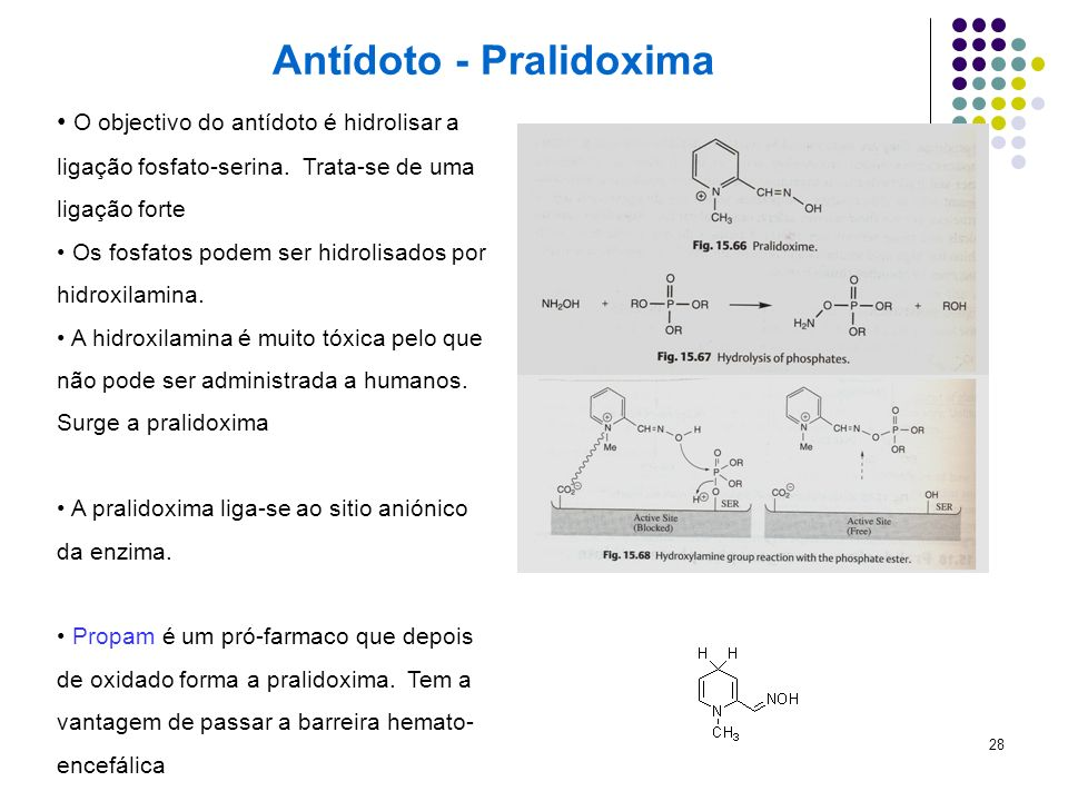 Antídoto - Pralidoxima