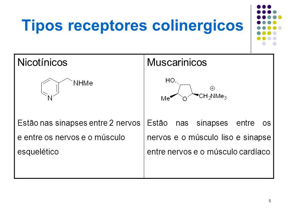 Tipos receptores colinergicos
