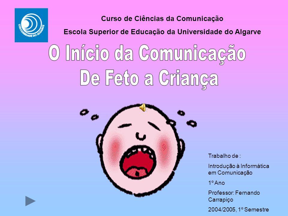 O Início da Comunicação