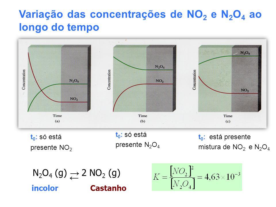 Variação das concentrações de NO2 e N2O4 ao longo do tempo