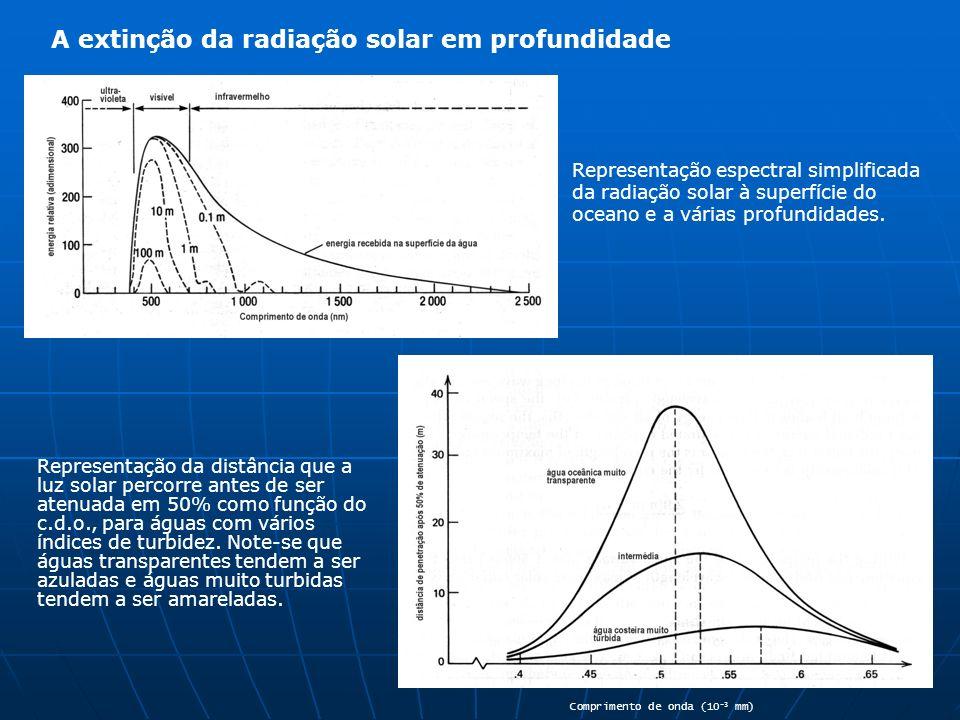 A extinção da radiação solar em profundidade