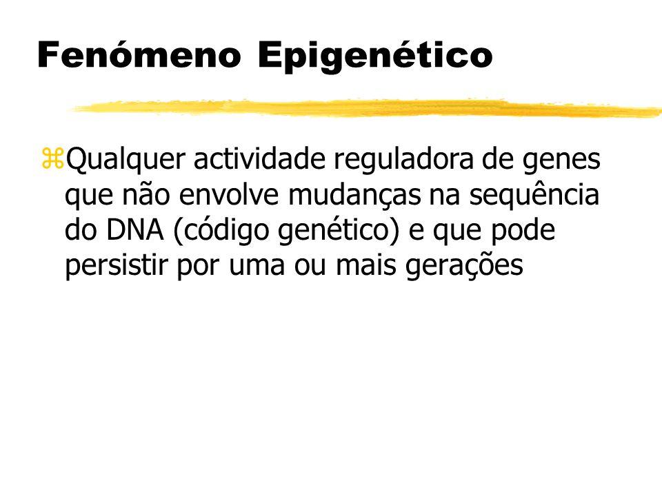 Fenómeno Epigenético