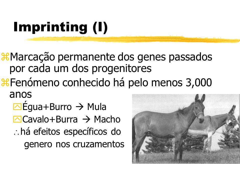 Imprinting (I)Marcação permanente dos genes passados por cada um dos progenitores. Fenómeno conhecido há pelo menos 3,000 anos.