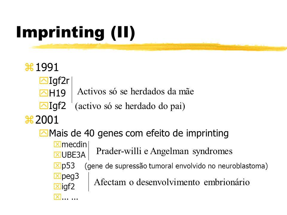 Imprinting (II) 1991 2001 Igf2r H19 Igf2 (activo só se herdado do pai)