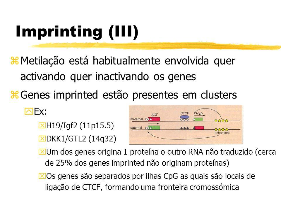 Imprinting (III)Metilação está habitualmente envolvida quer activando quer inactivando os genes. Genes imprinted estão presentes em clusters.