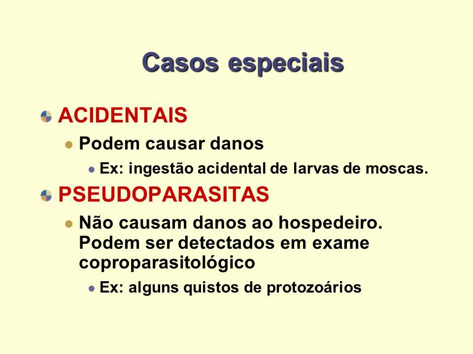 Casos especiais ACIDENTAIS PSEUDOPARASITAS Podem causar danos