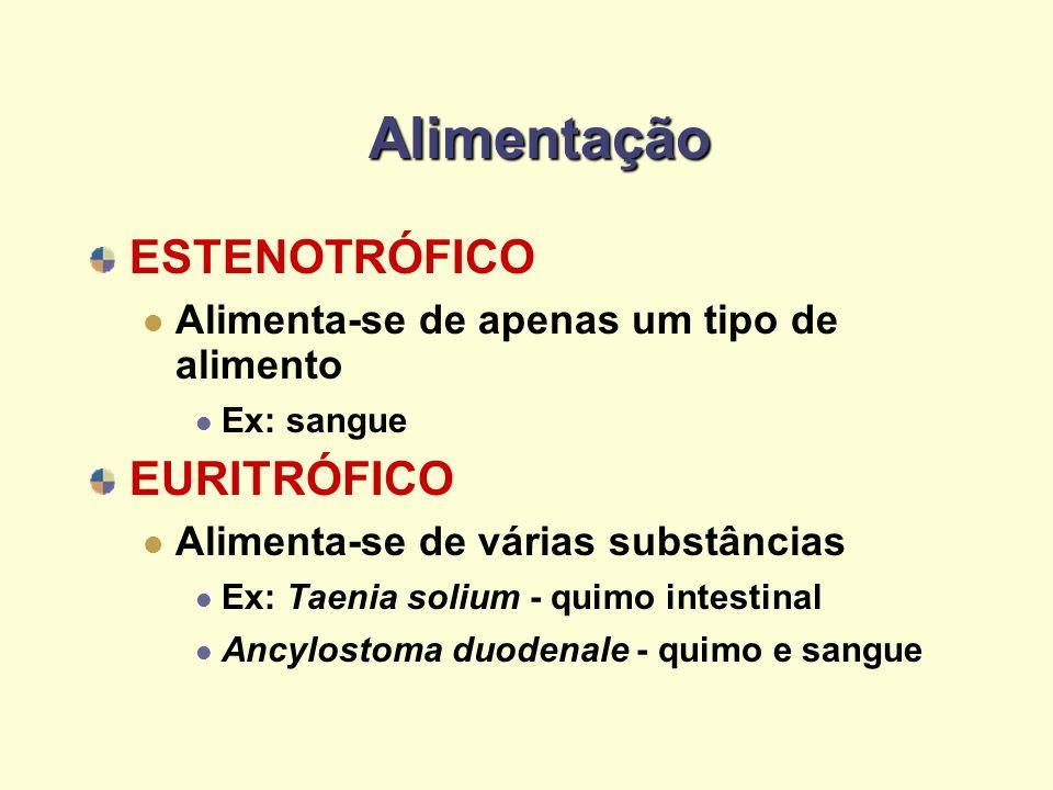 Alimentação ESTENOTRÓFICO EURITRÓFICO