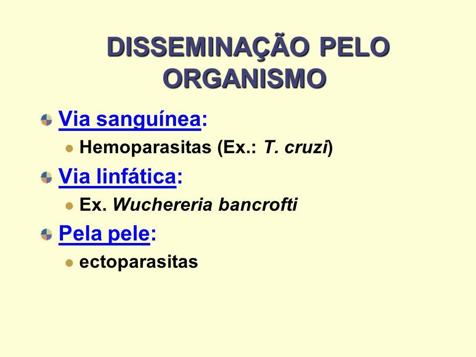 DISSEMINAÇÃO PELO ORGANISMO