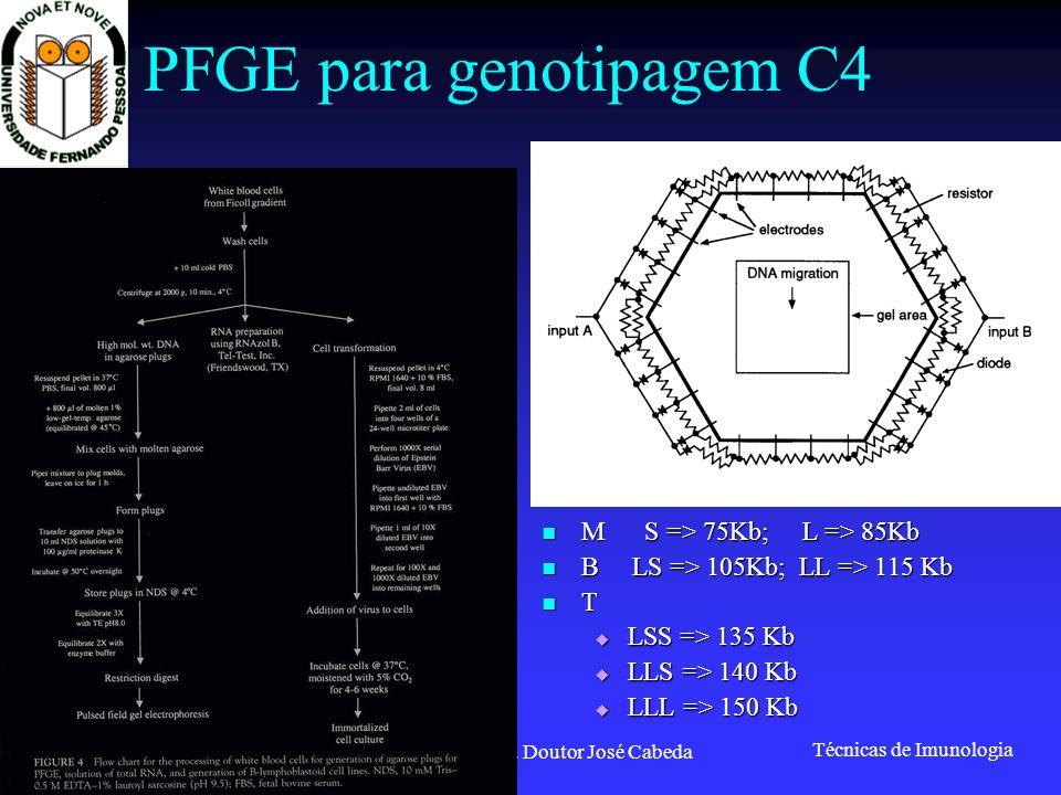 PFGE para genotipagem C4