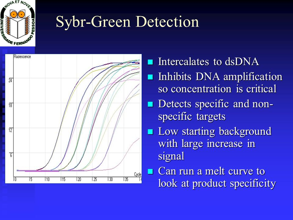 Sybr-Green Detection Intercalates to dsDNA