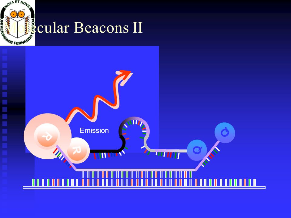 Molecular Beacons II Emission R Q Excitation R Q Q R X