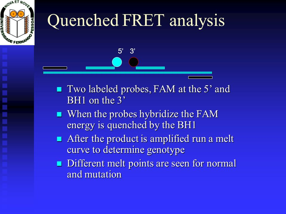 Quenched FRET analysis