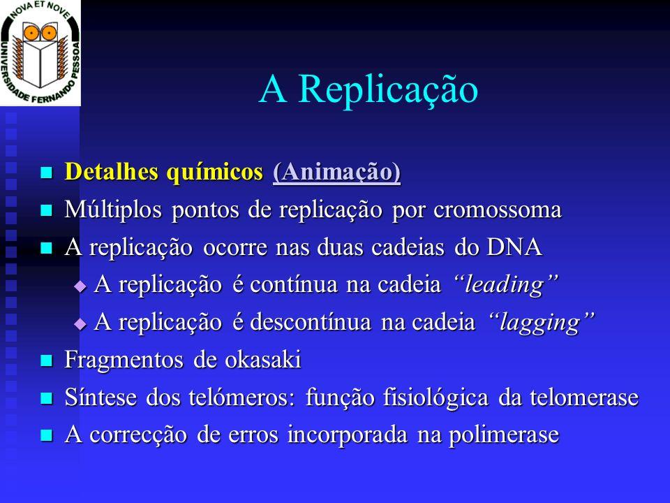 A Replicação Detalhes químicos (Animação)