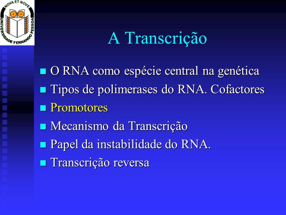 A Transcrição O RNA como espécie central na genética