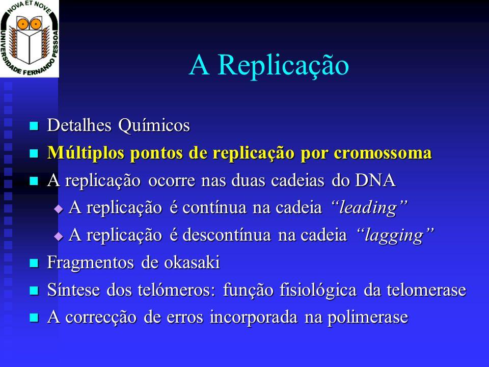 A Replicação Detalhes Químicos