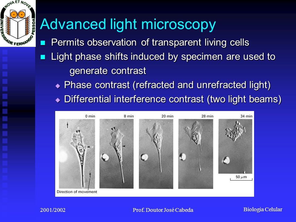 Advanced light microscopy