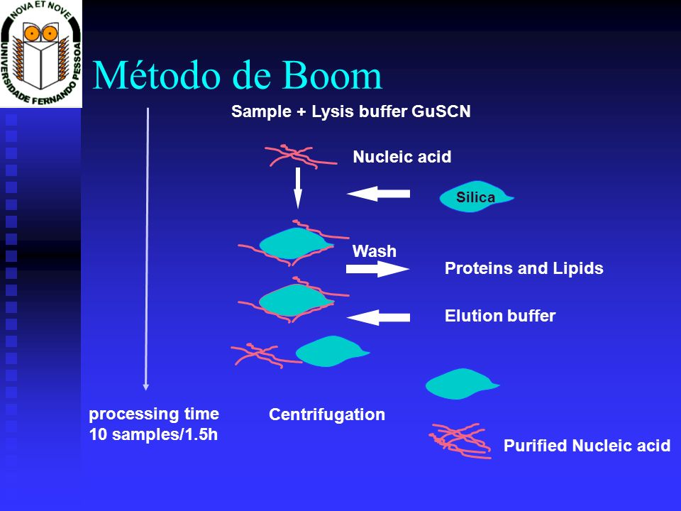 Método de Boom Sample + Lysis buffer GuSCN Nucleic acid Wash