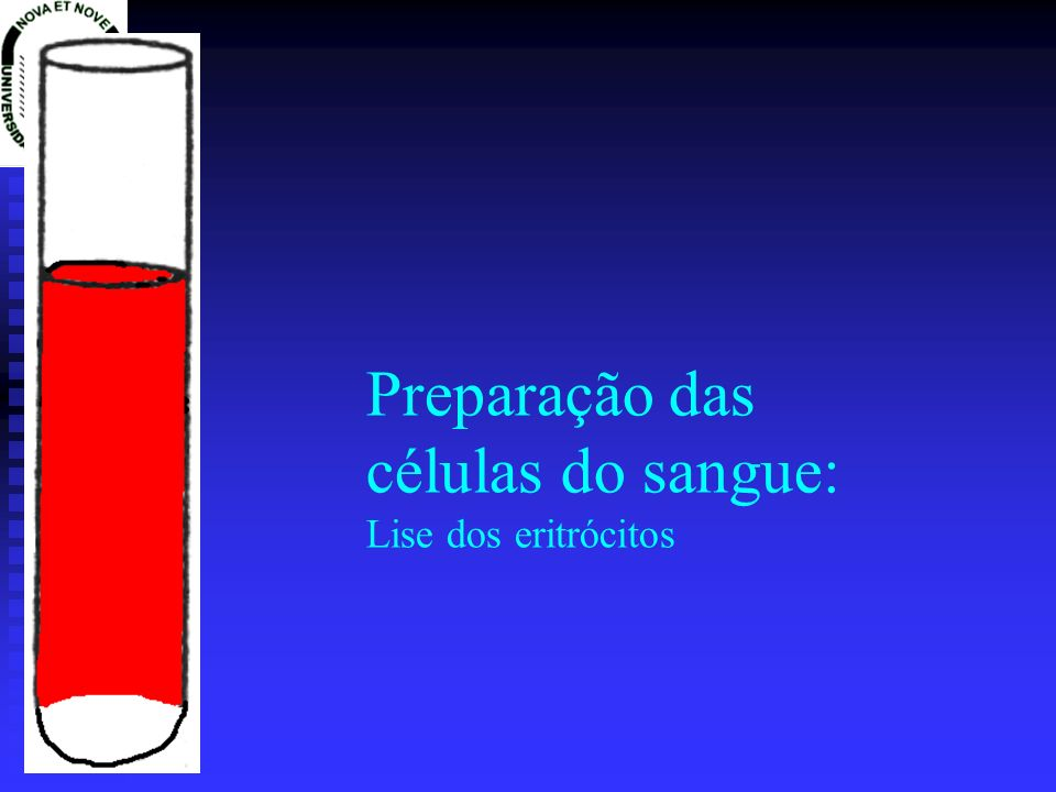 Preparação das células do sangue: Lise dos eritrócitos