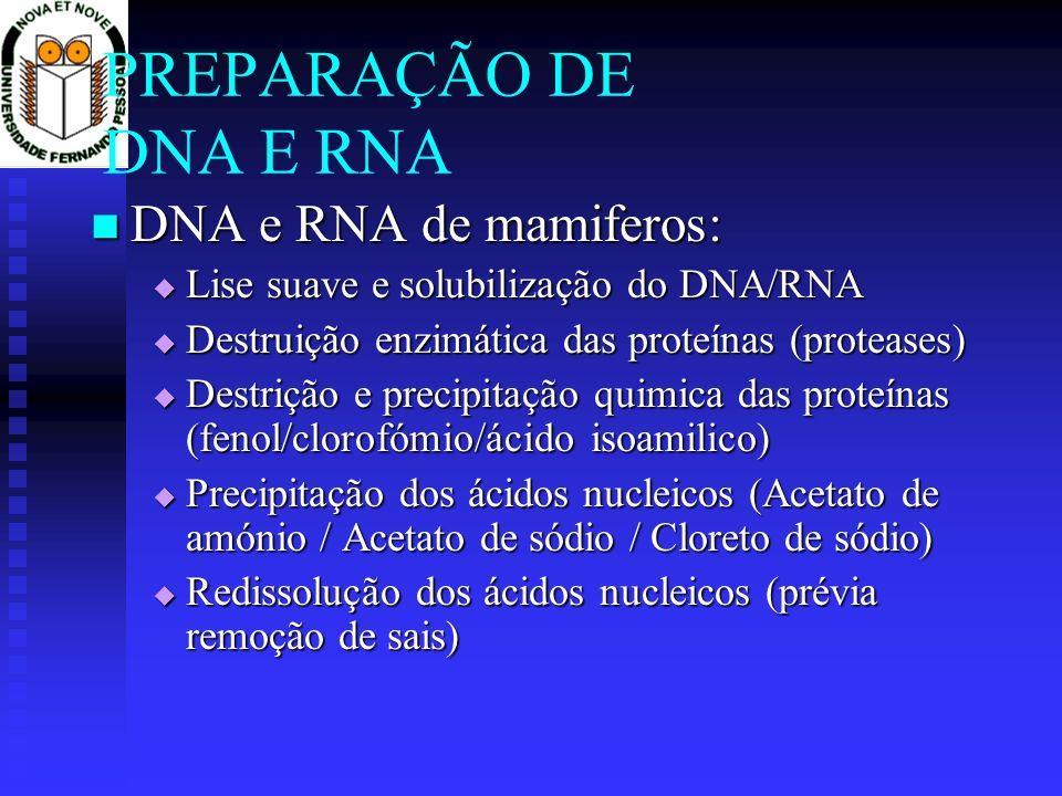 PREPARAÇÃO DE DNA E RNA DNA e RNA de mamiferos:
