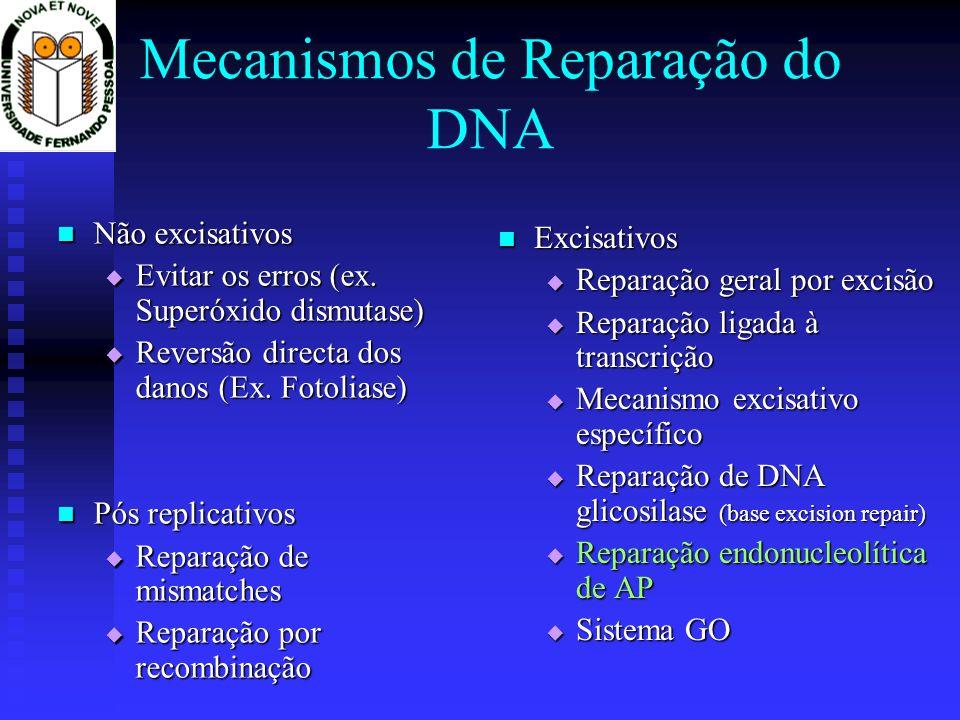 Mecanismos de Reparação do DNA