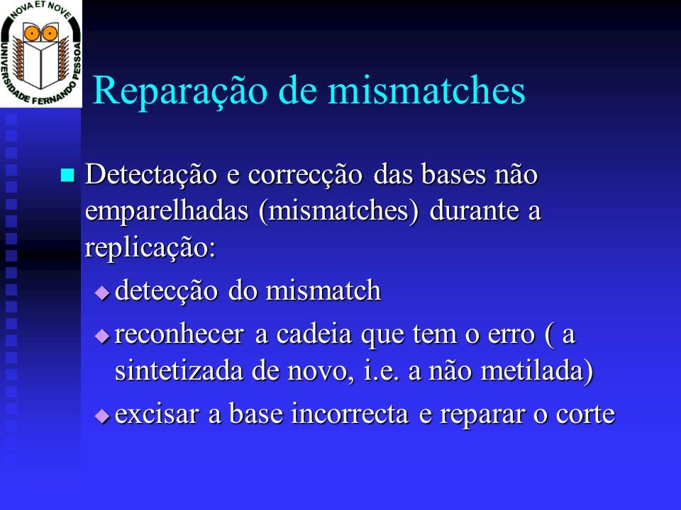 Reparação de mismatches