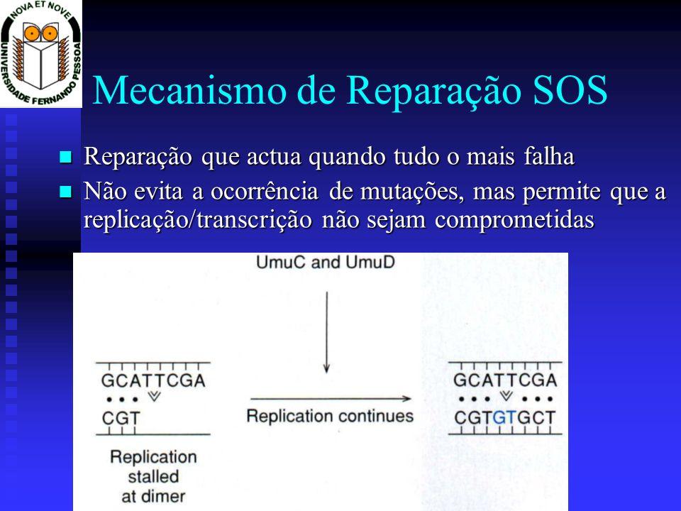 Mecanismo de Reparação SOS