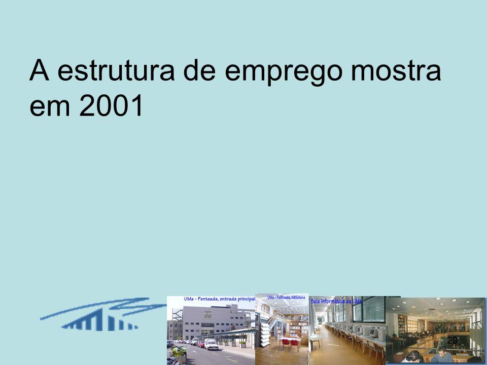 A estrutura de emprego mostra em 2001