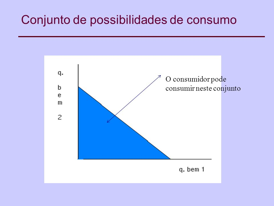 Conjunto de possibilidades de consumo