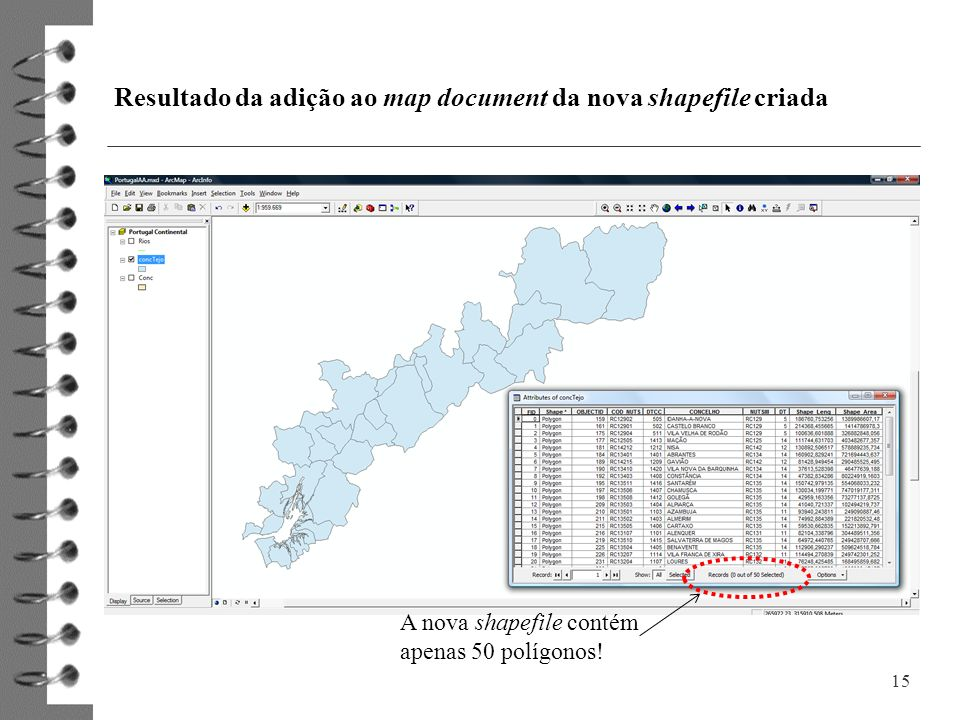Resultado da adição ao map document da nova shapefile criada