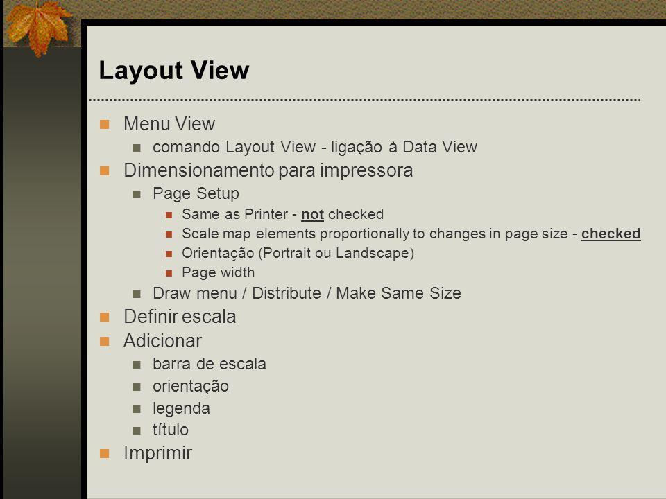 Layout View Menu View Dimensionamento para impressora Definir escala