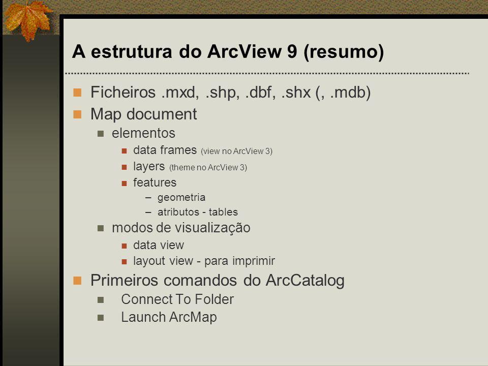 A estrutura do ArcView 9 (resumo)