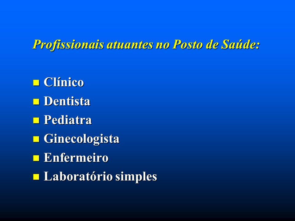Profissionais atuantes no Posto de Saúde: